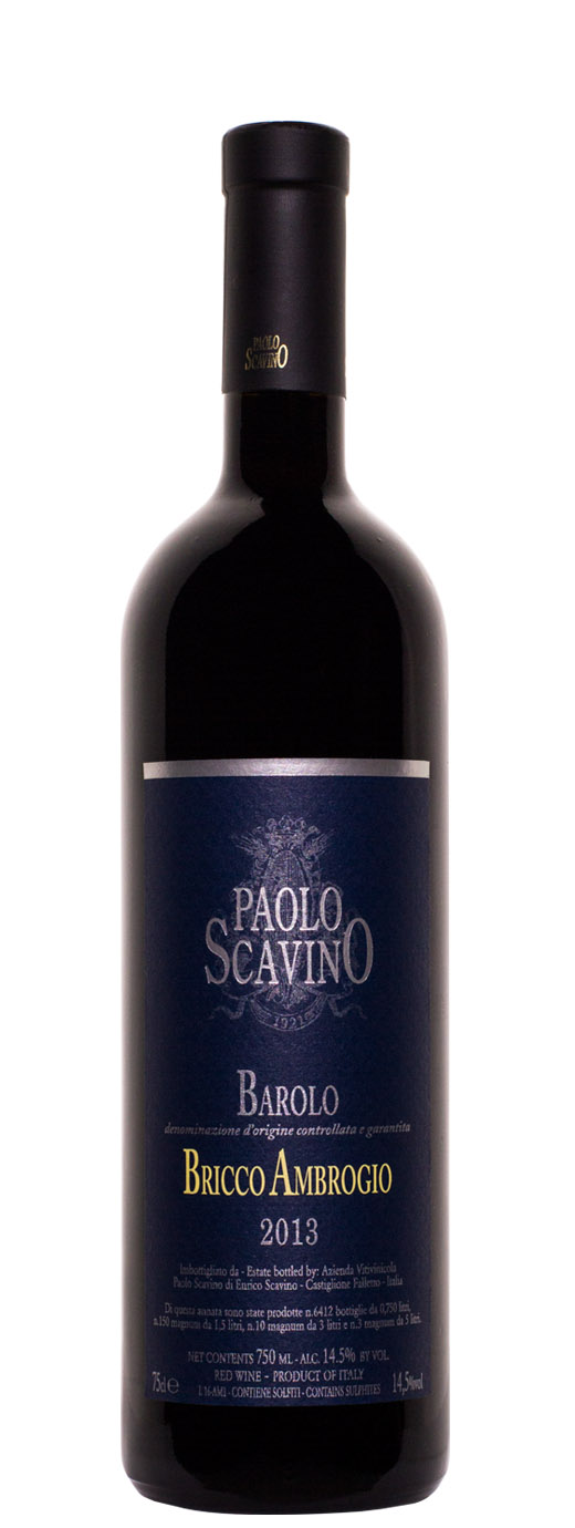 2013 Paolo Scavino Bricco Ambrogio